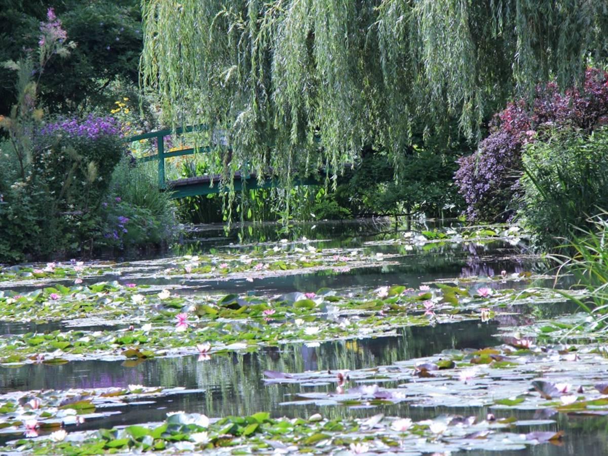 Le plan d'eau dans le jardin Claude Monet à Giverny