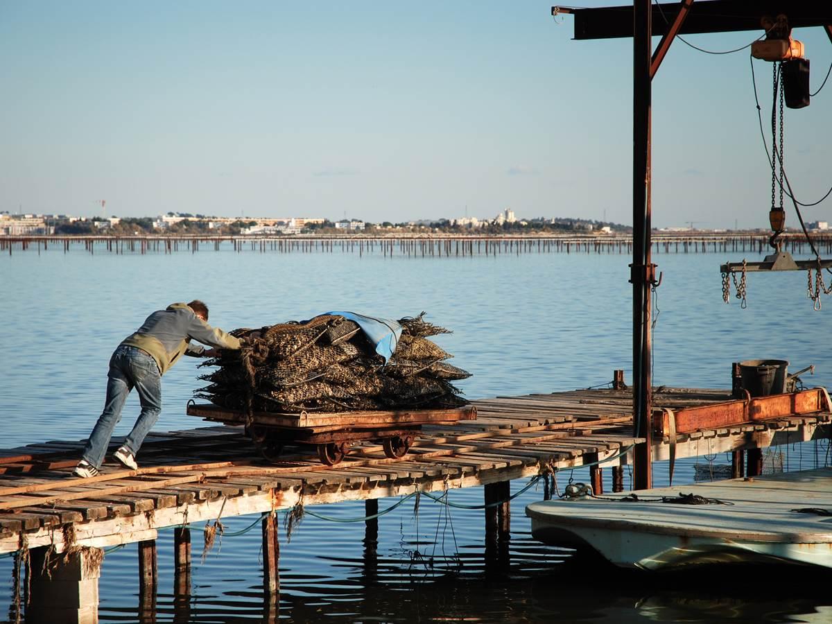 Parcs à huîtres et ports ostréicoles au Cap-Ferret