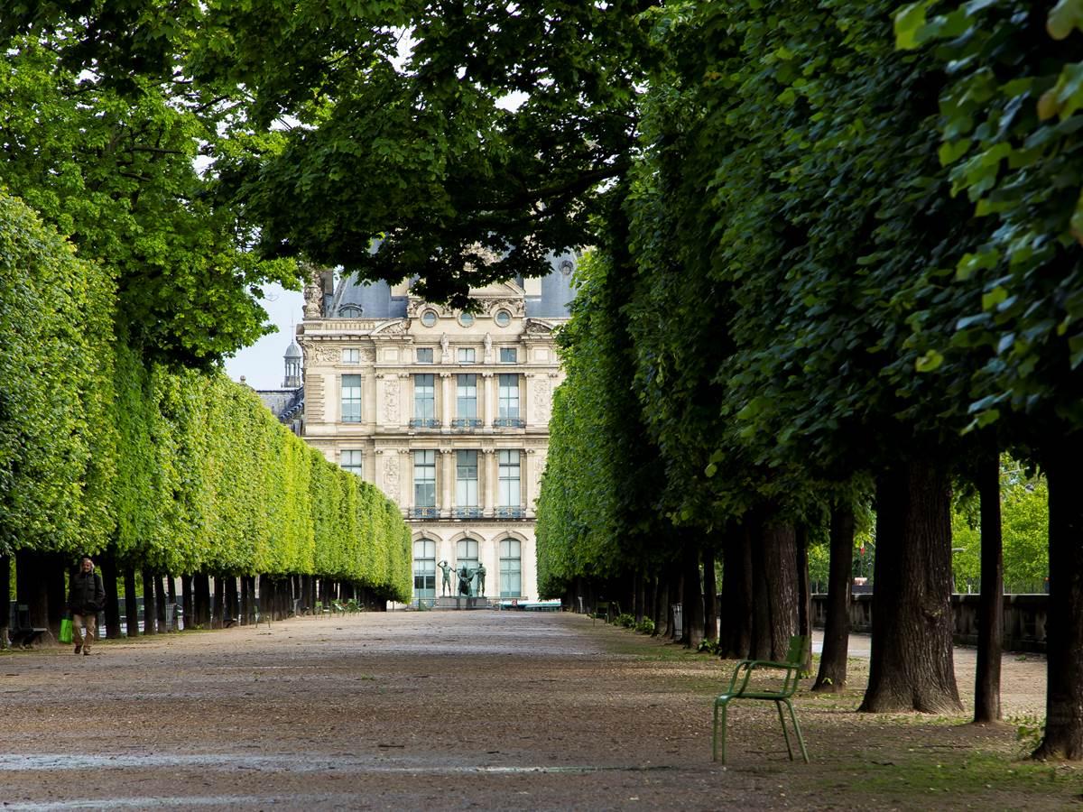 524894361 Jardin des Tuileries. Vue sur le musée du Louvre