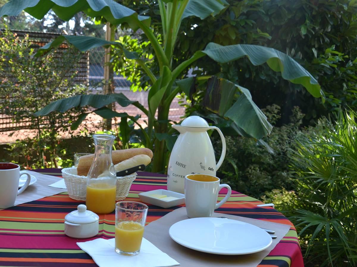 Chambres d'hôtes à Lunel, petit déjeuner dans le jardin