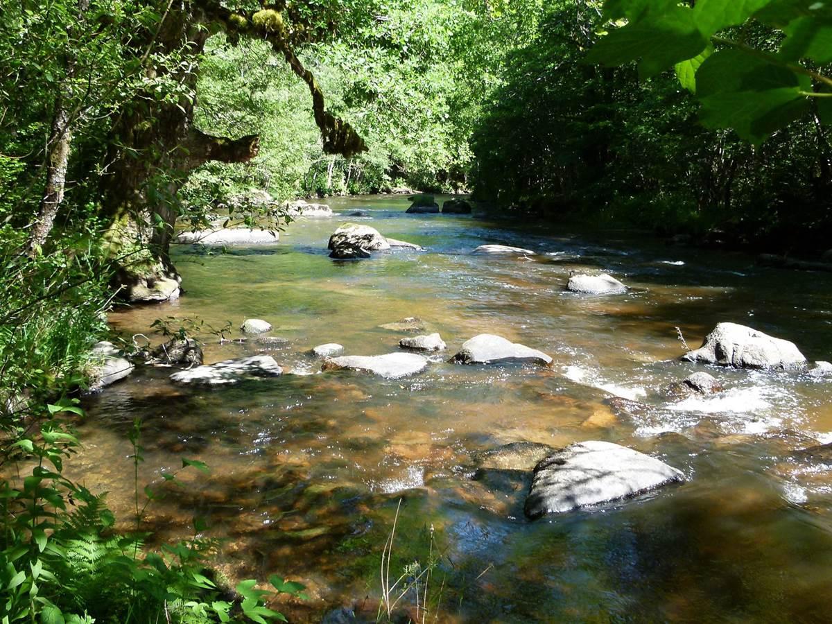 La Triouzoune Dordogne pêche truite gîte moulin clémensac