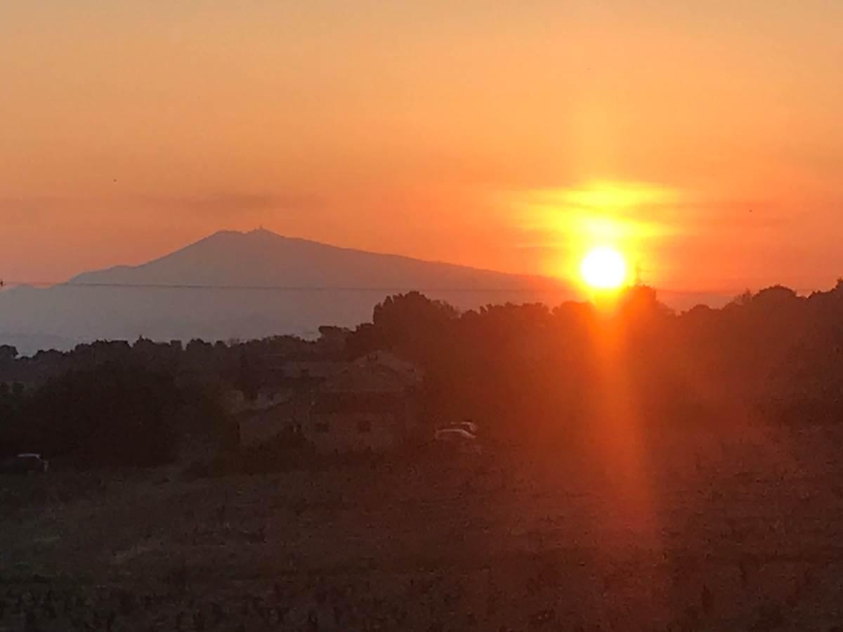 Le Mas Mellou  Lever de soleil sur le Mont Ventoux