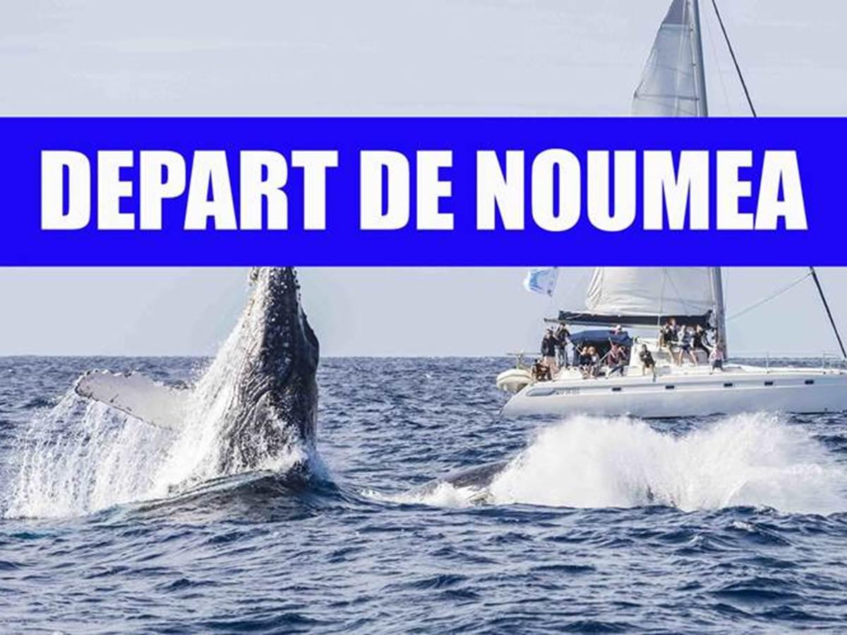 de´part Noumea baleine