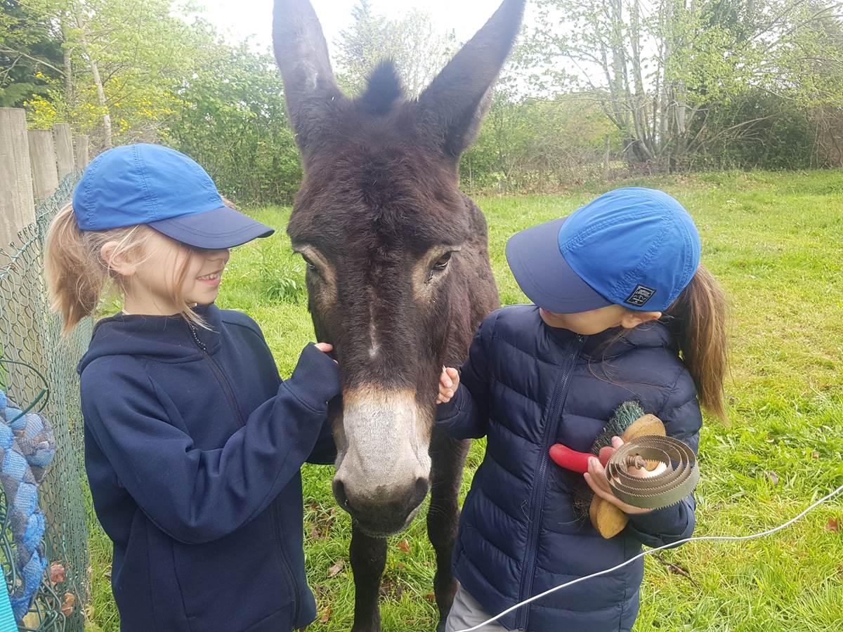Image écoute ce que ces deux demoiselles lui racontent randonnée avec un âne Maison du Masjoubert séjour famille