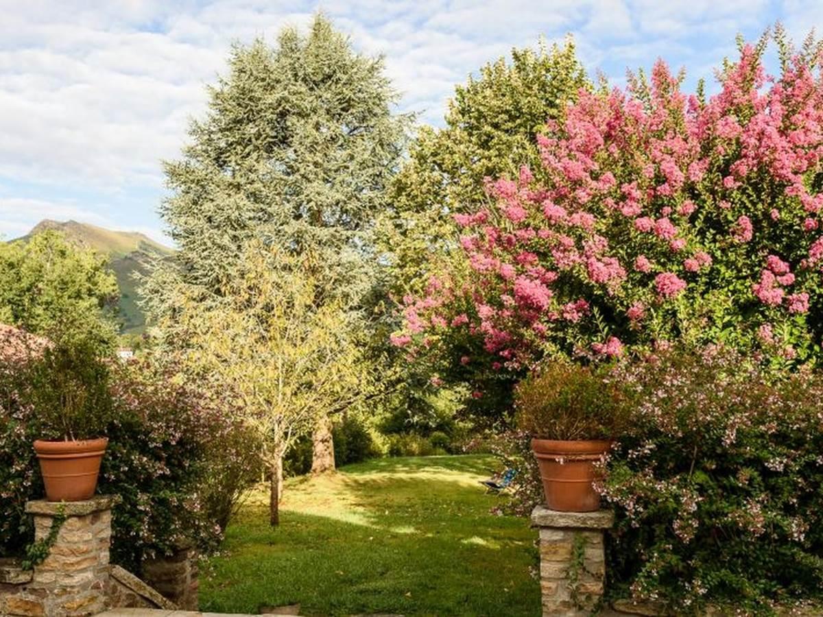Dominxenea-jardin
