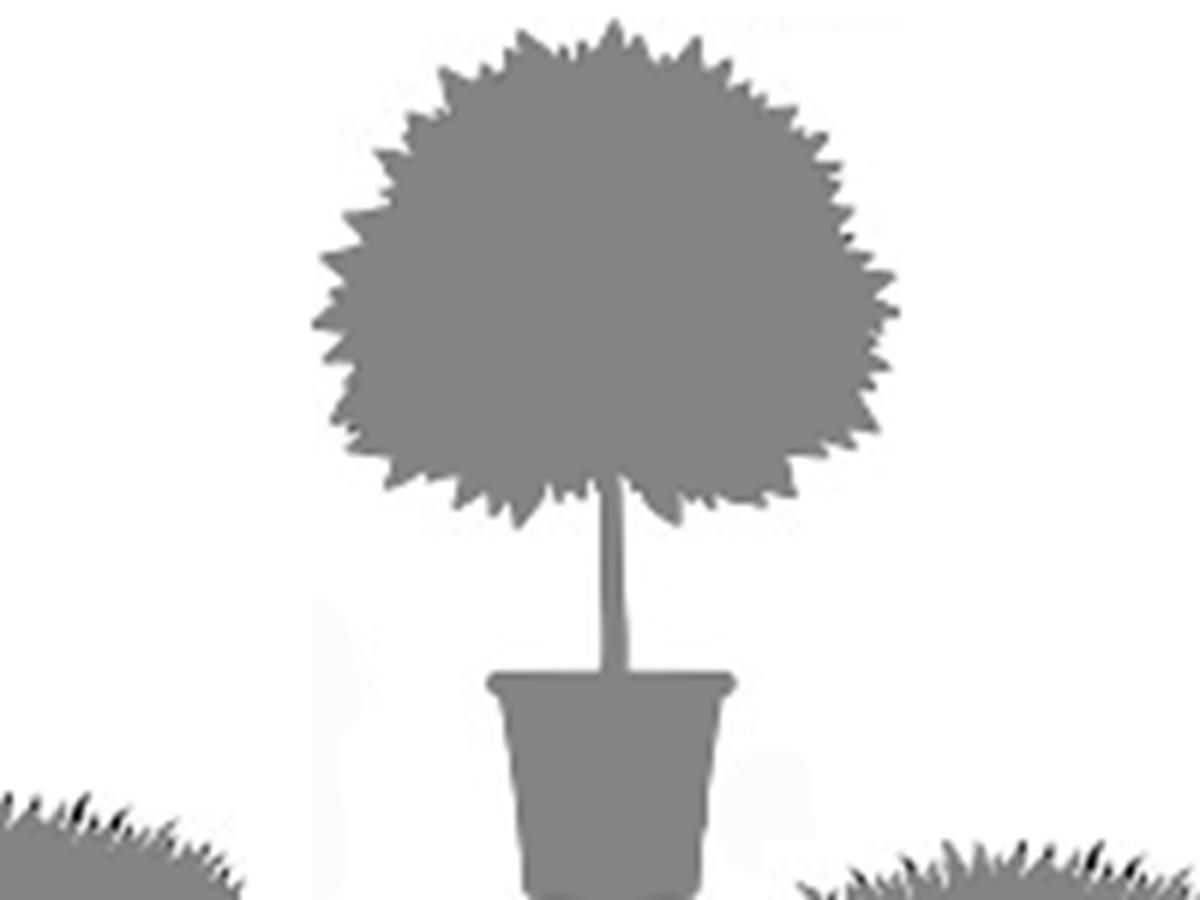 Jardins de Castillon (Plantbessin)