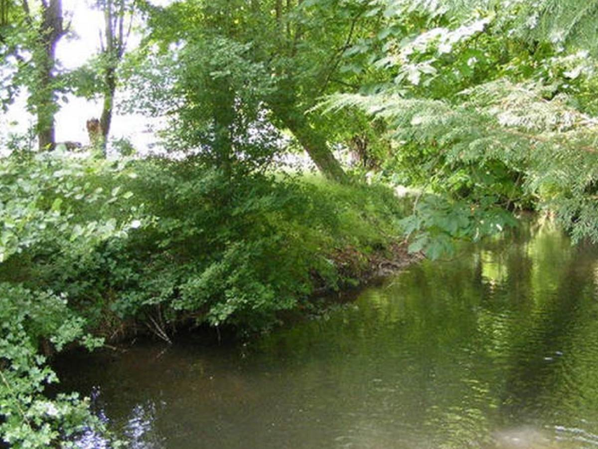 River at end of the garden