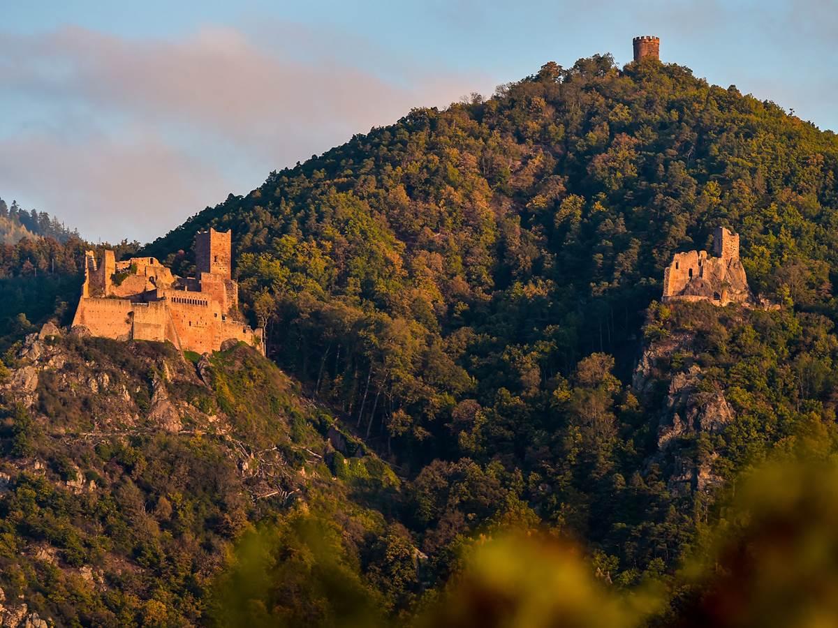 Les trois châteaux de Ribeauvillé