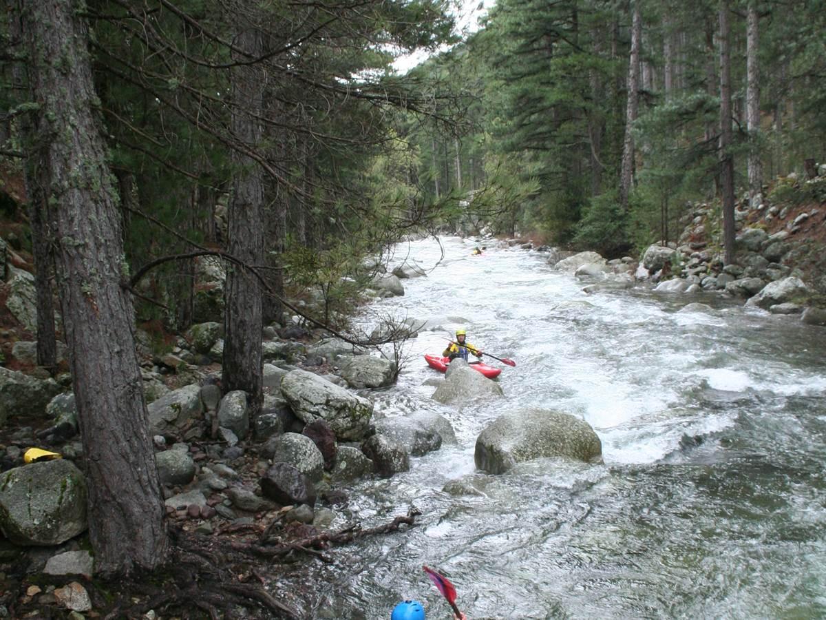 canoë kayak en rivière  forêt de Calasima
