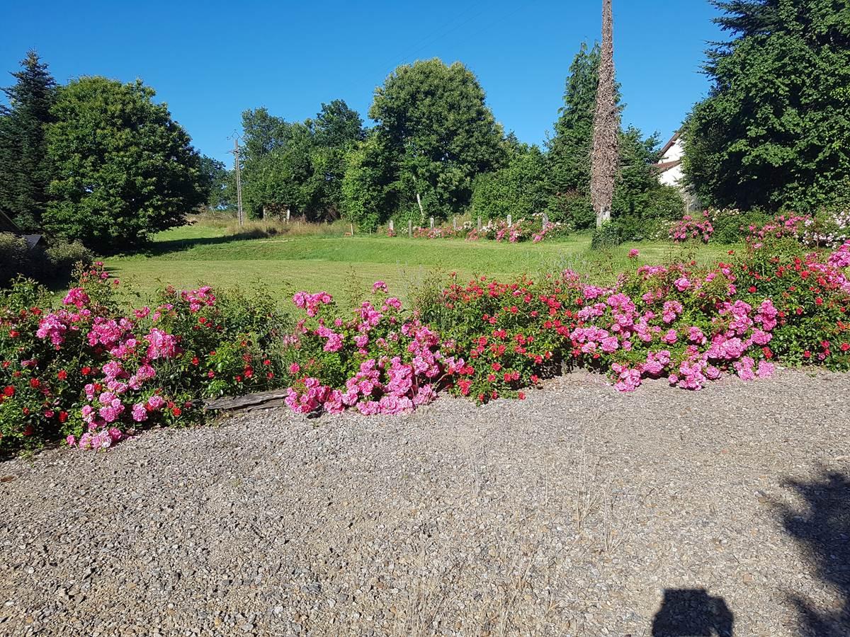 jardin fleuri Le Ranch des Lacs