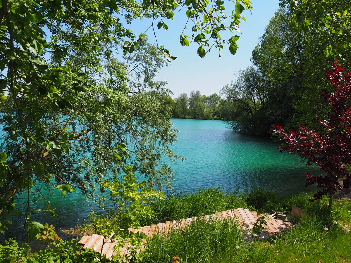 Le bord du lac