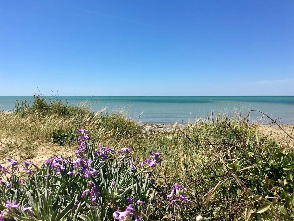Les plages de l'île d'Oléron sont toutes proches de la maison