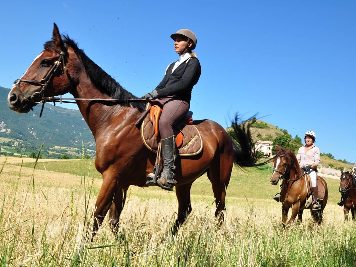 Plusieurs possibilités de faire de l'equitation à proximité