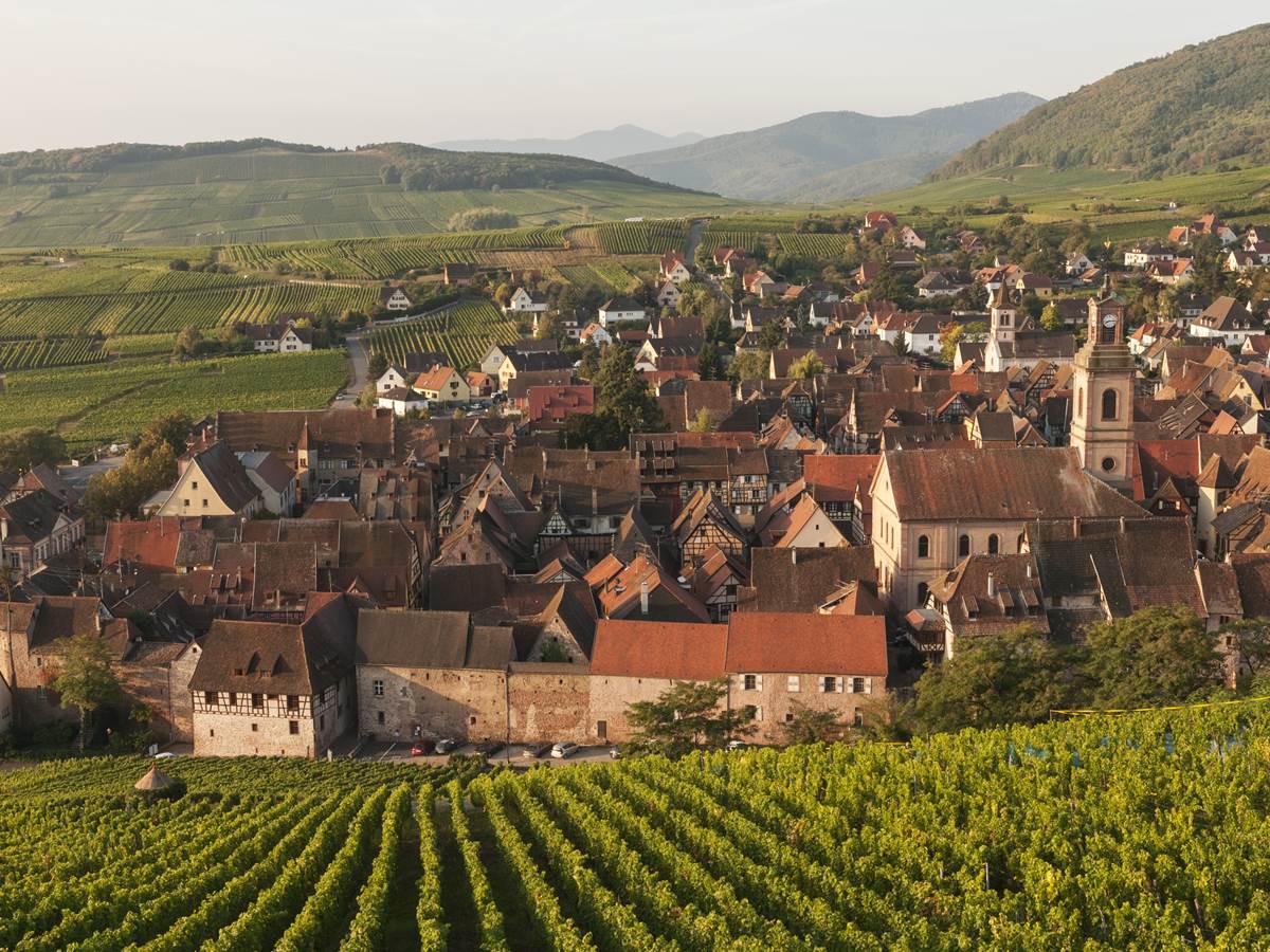Le charmant village de Riquewihr, au beau milieu des vignes