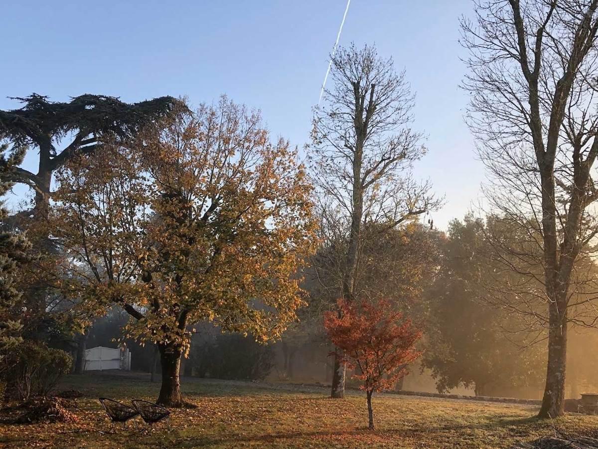 Jardin et arbres chambre-d-hote-lesmatinsrubis-tarn-et-garonne-occitanie-location-toulouse
