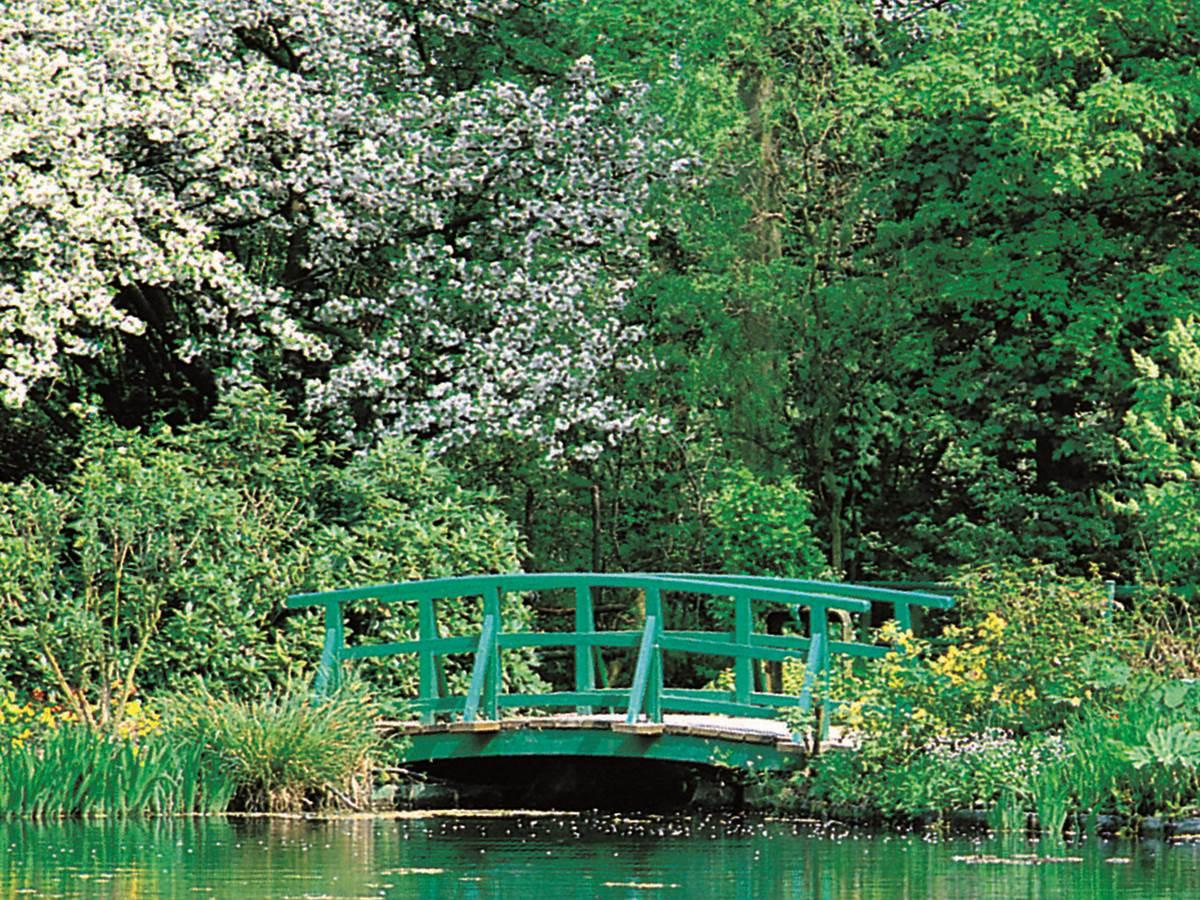 Jardin de la Fondation Claude Monet