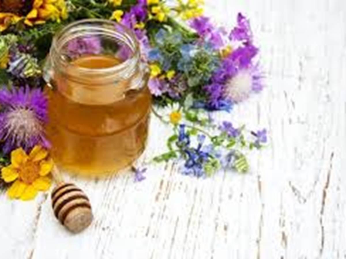 miel du Causse