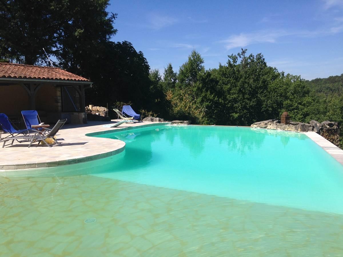 La piscine et son pool-house !