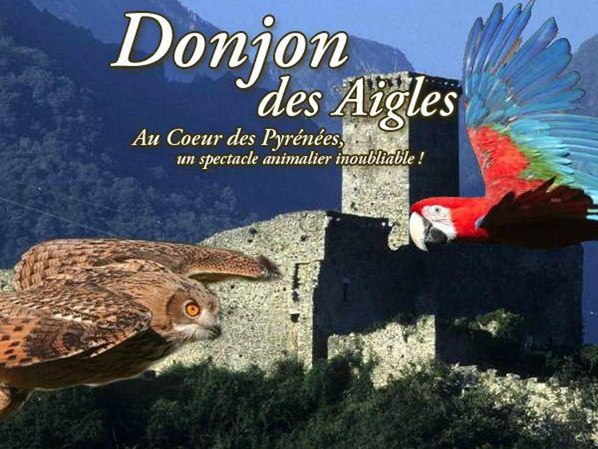 donjon-des-aigles-beaucens-1311754294