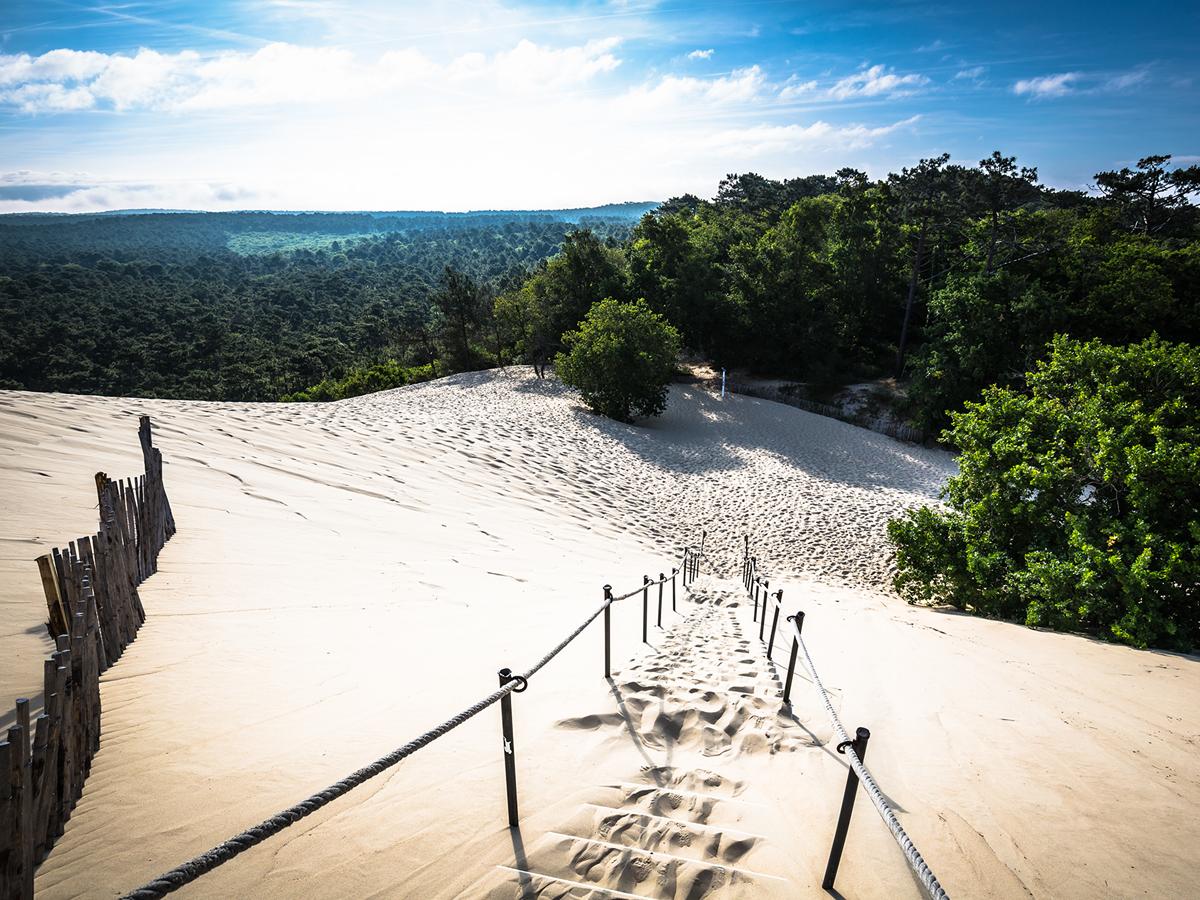 La Dune du Pilat et sa crête qui dépasse les 100 mètres, bordée de pins
