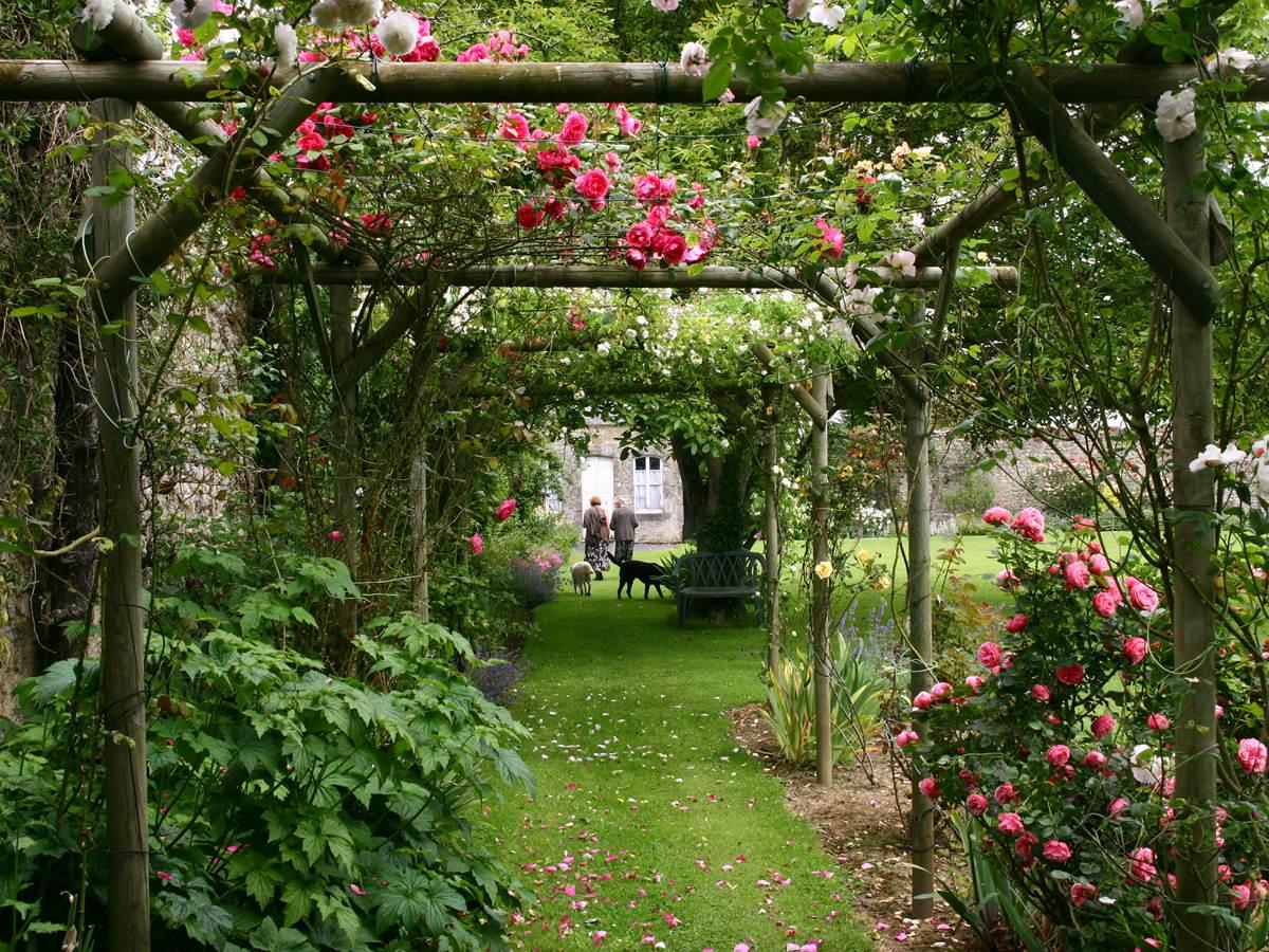 La roseraie de Laure en Juin