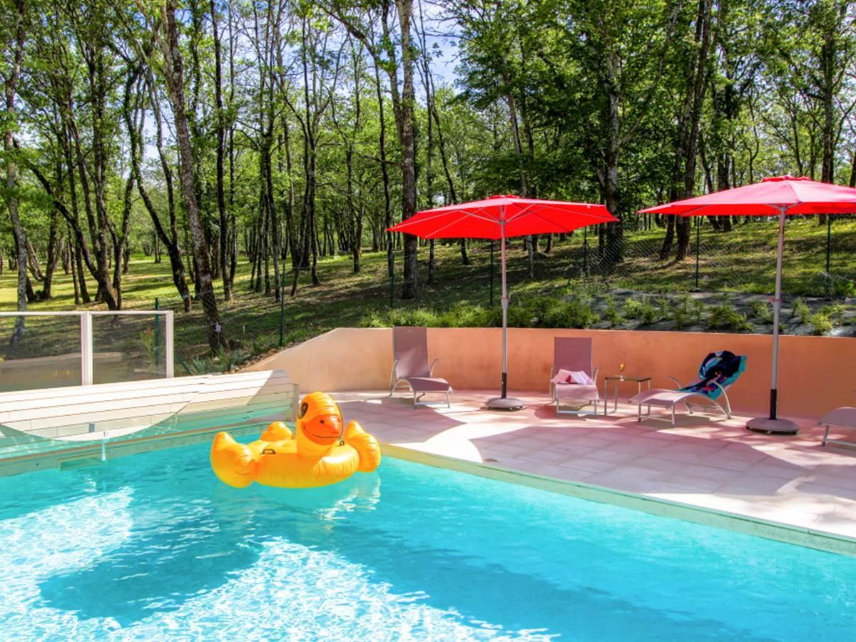Canard dans la piscine