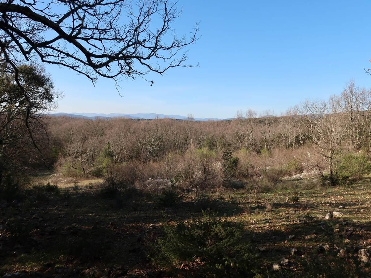 Vue depuis une petite colline dans le Domaine