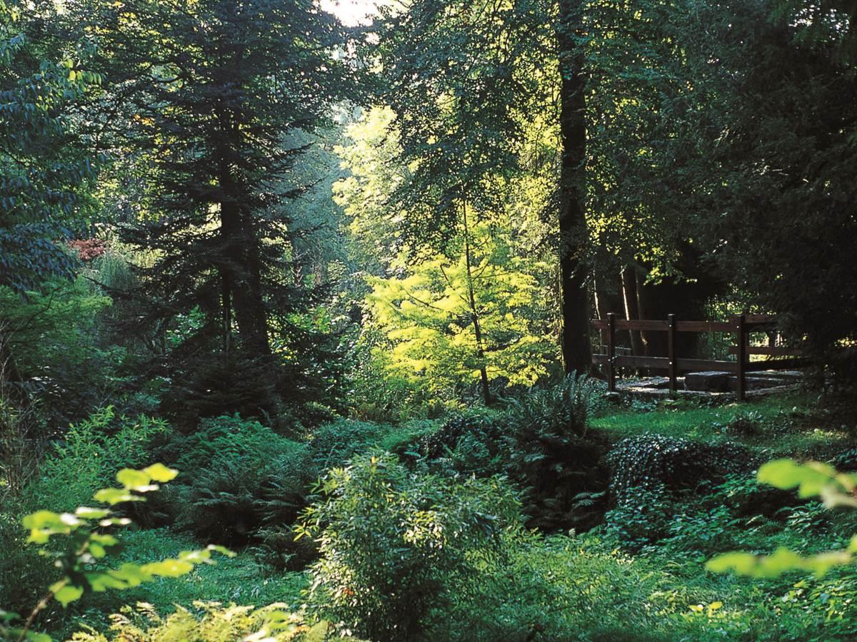 Parc botanique de Kerbihan