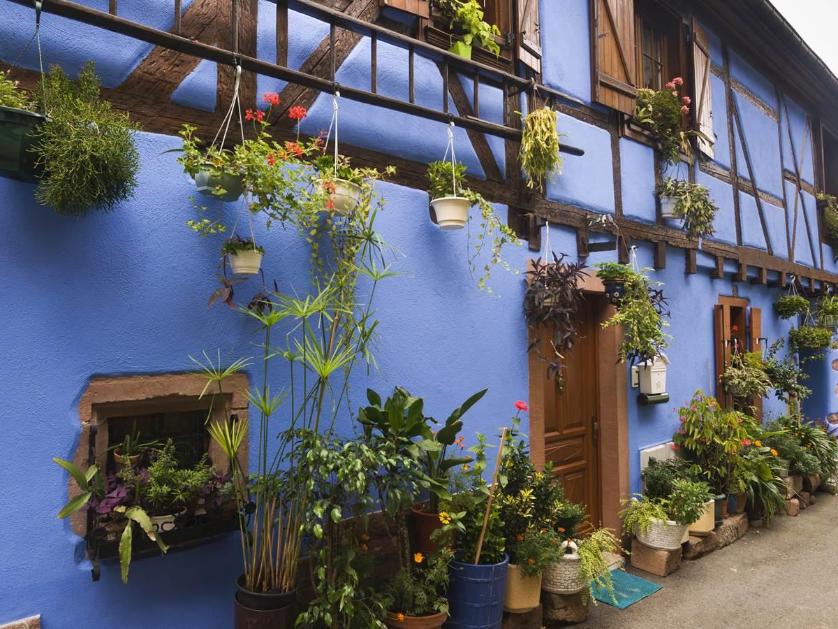 De la couleur et des fleurs partout: Combien de jardinières avez-vous comptées?