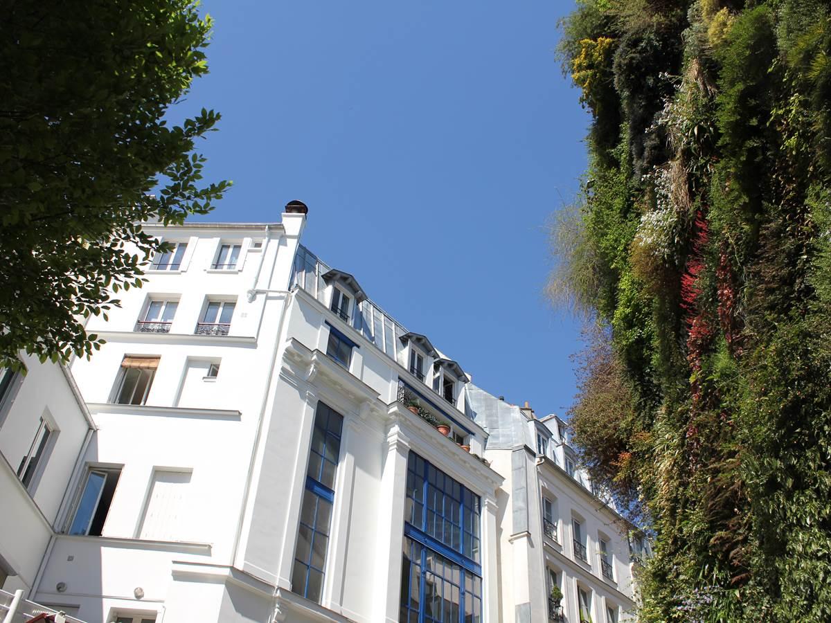 Mur végétal rue des petits carreaux quartier Montorgueil