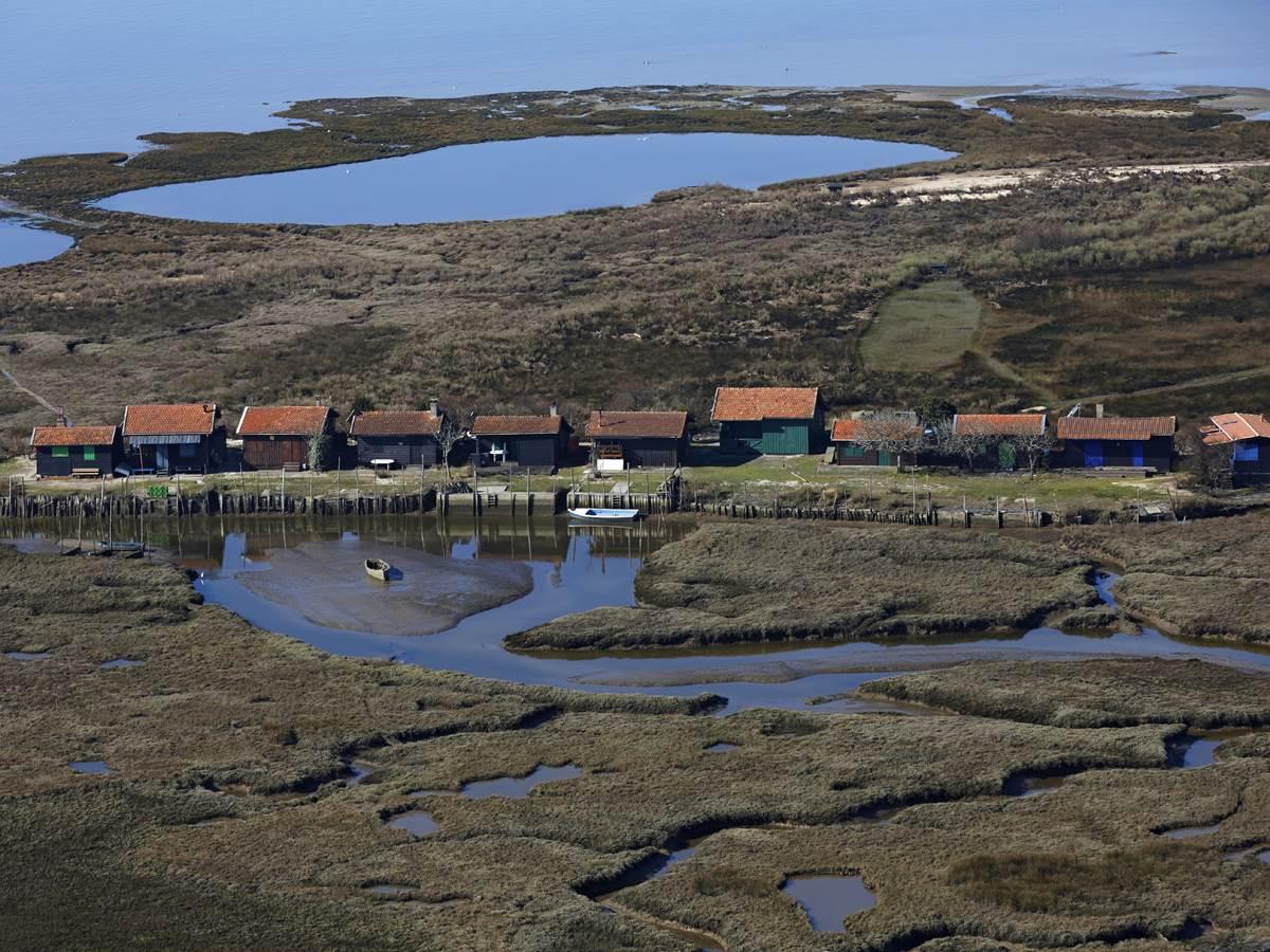 L'île aux oiseaux dans la baie D'arcachon