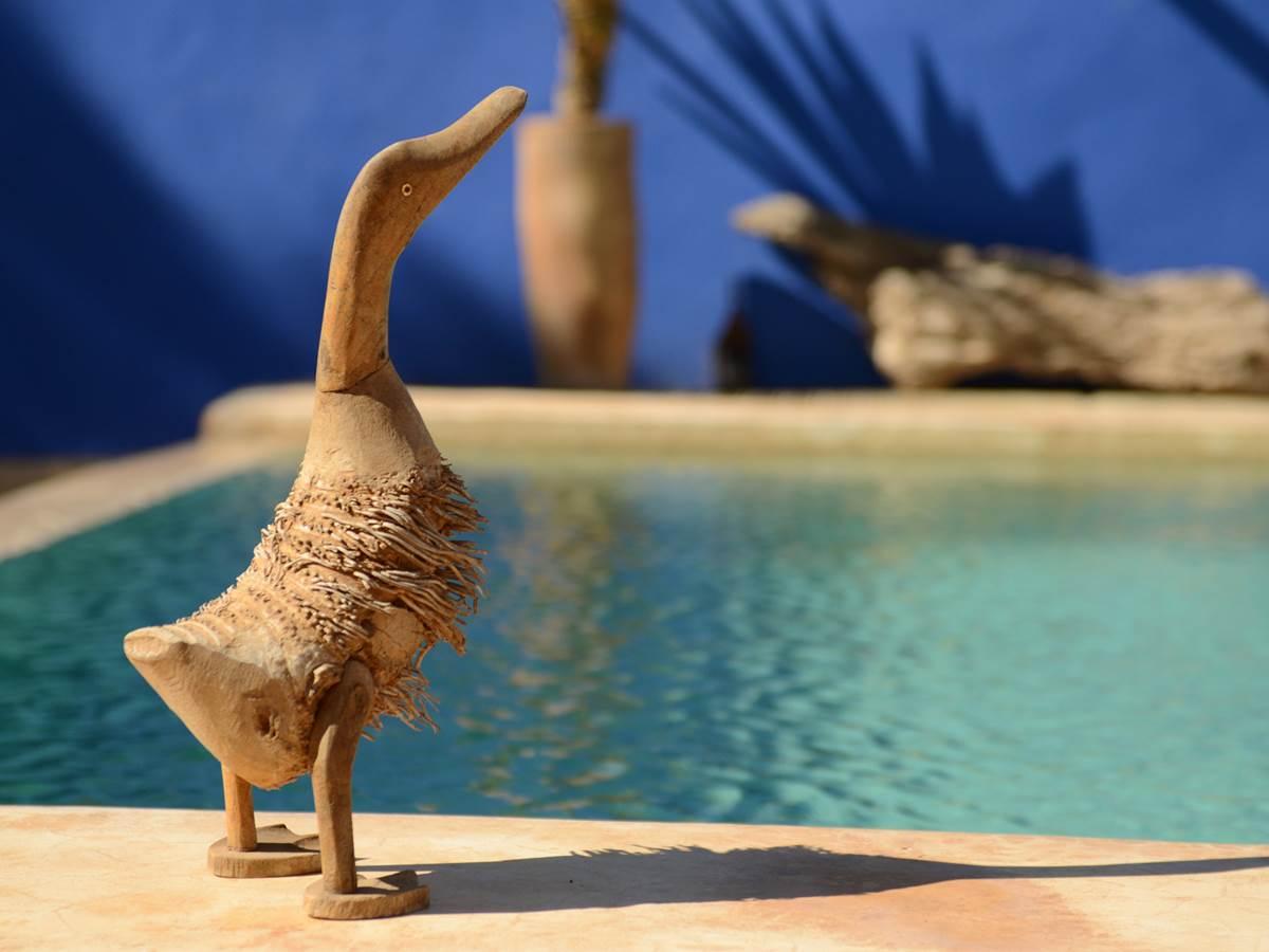 piscine de Baoussala (détail)