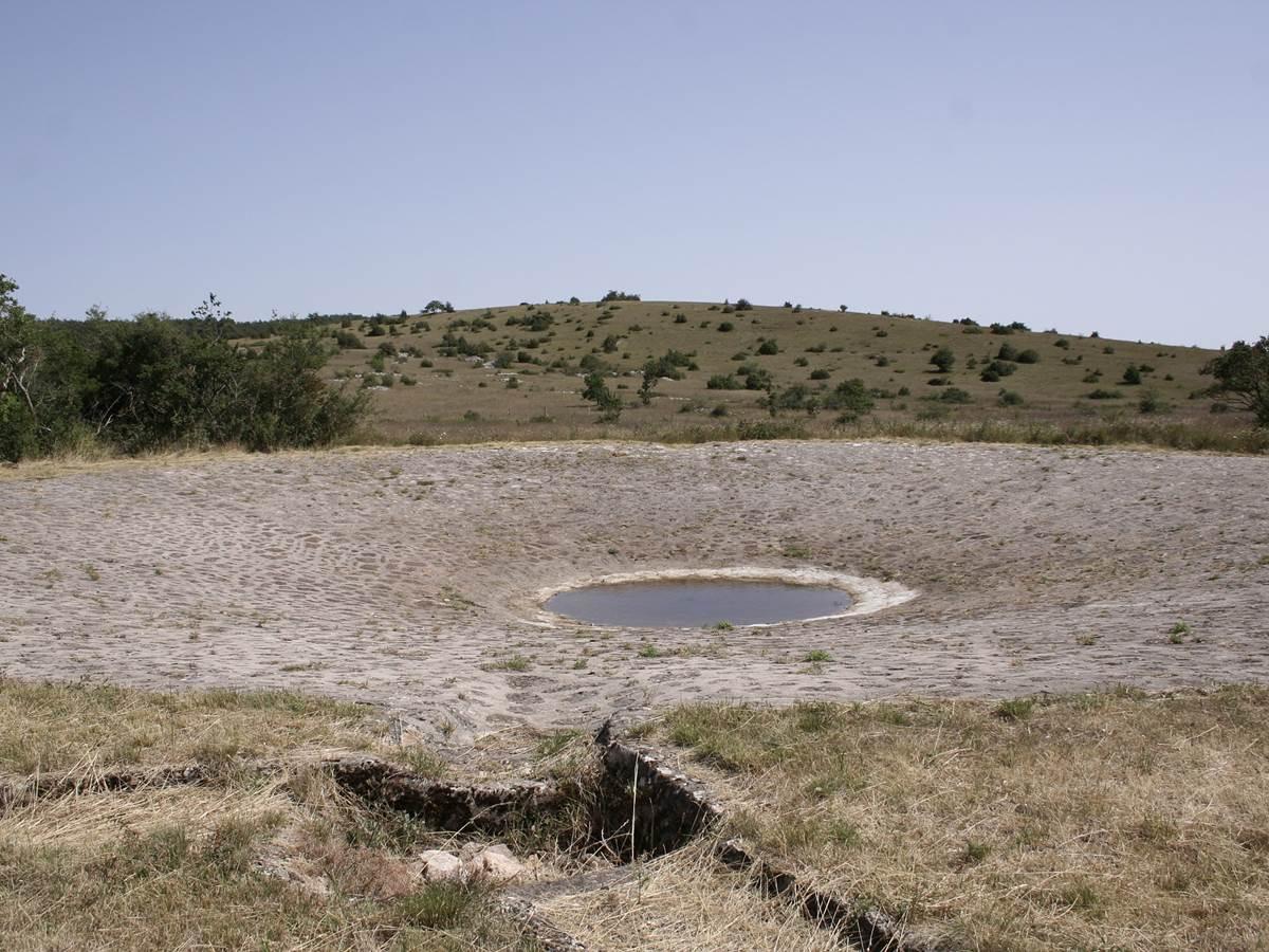 pond-4876572_1920