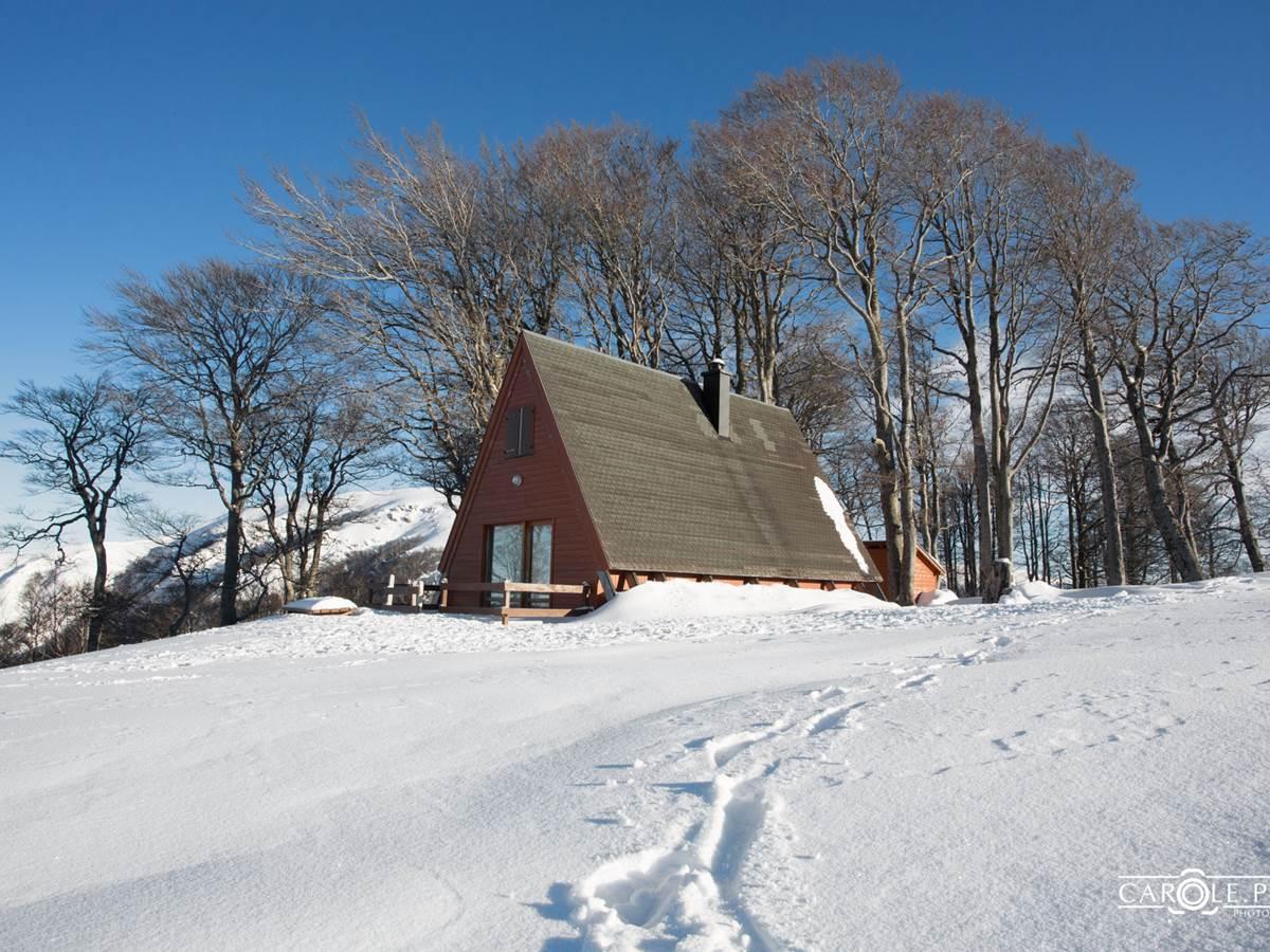 le chalet en bois Delta V1 en hiver