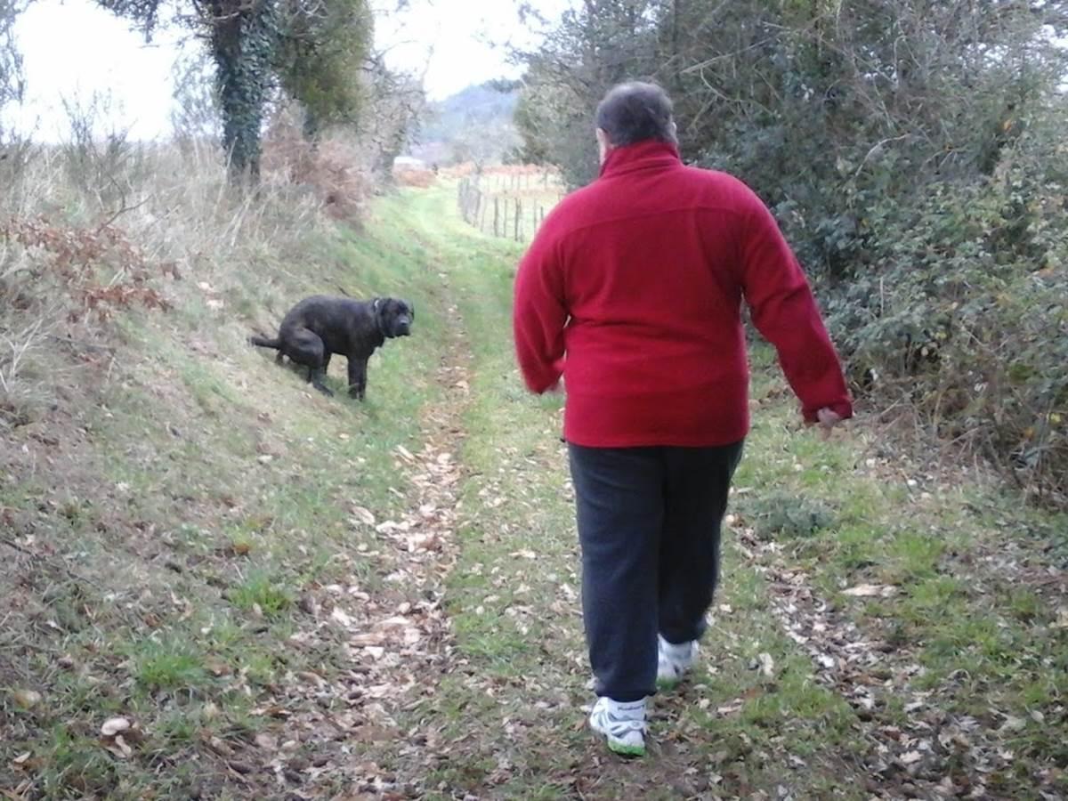 Jules marche avec iambo3 - confinement - respirer