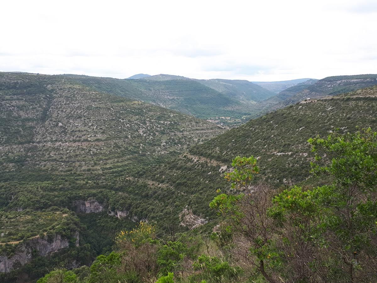 Les méandres de la Vis entaillent profondément les plateaux calcaires.