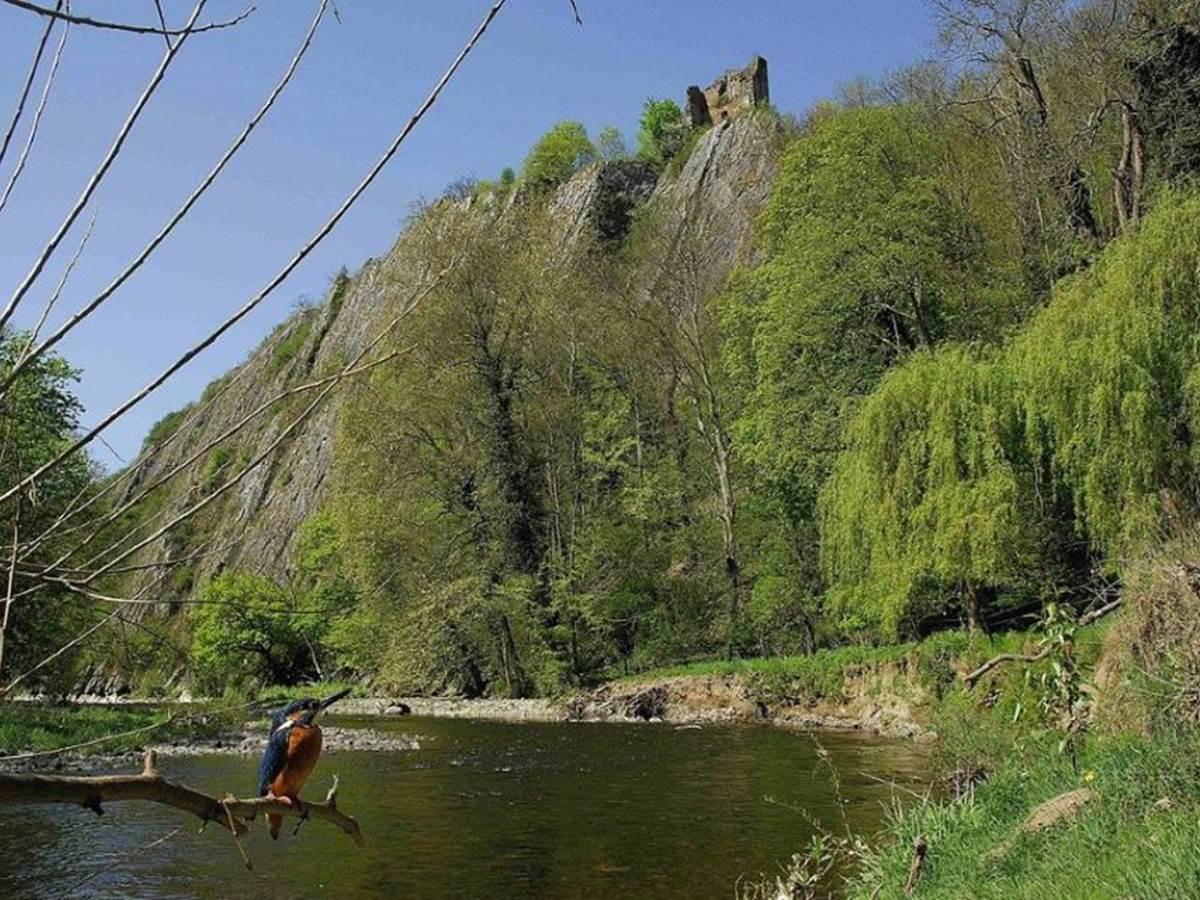 Château_d'Amblève_62009-CLT-0031-01[1]