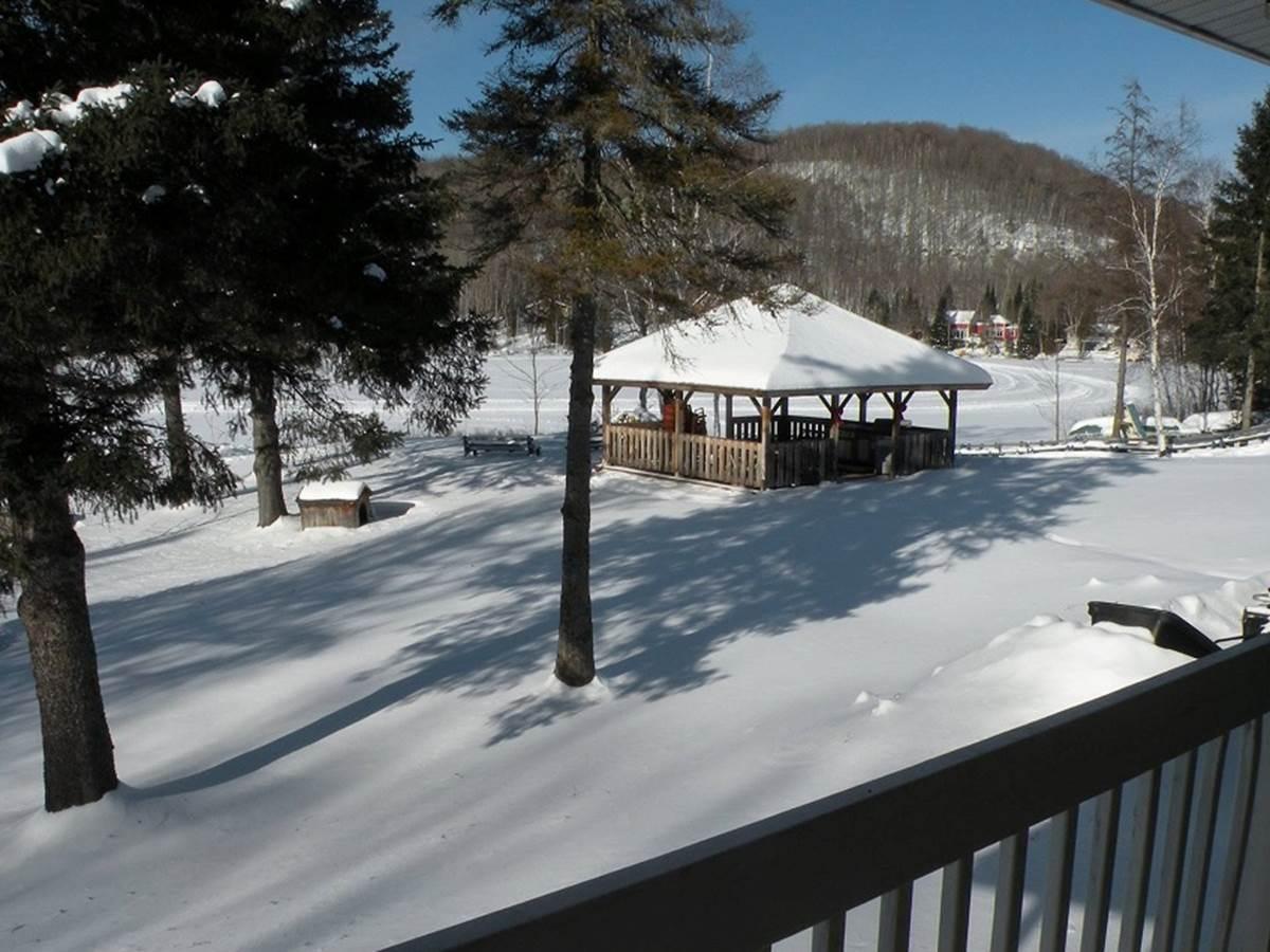 lac gelé et enneigé