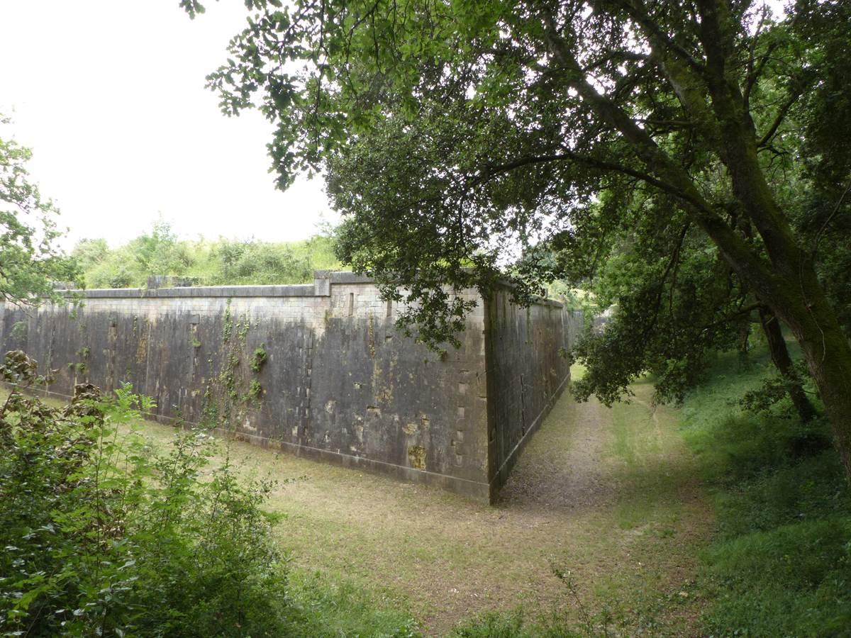 Vue du Fort Liédot depuis la forêt qui l'entoure