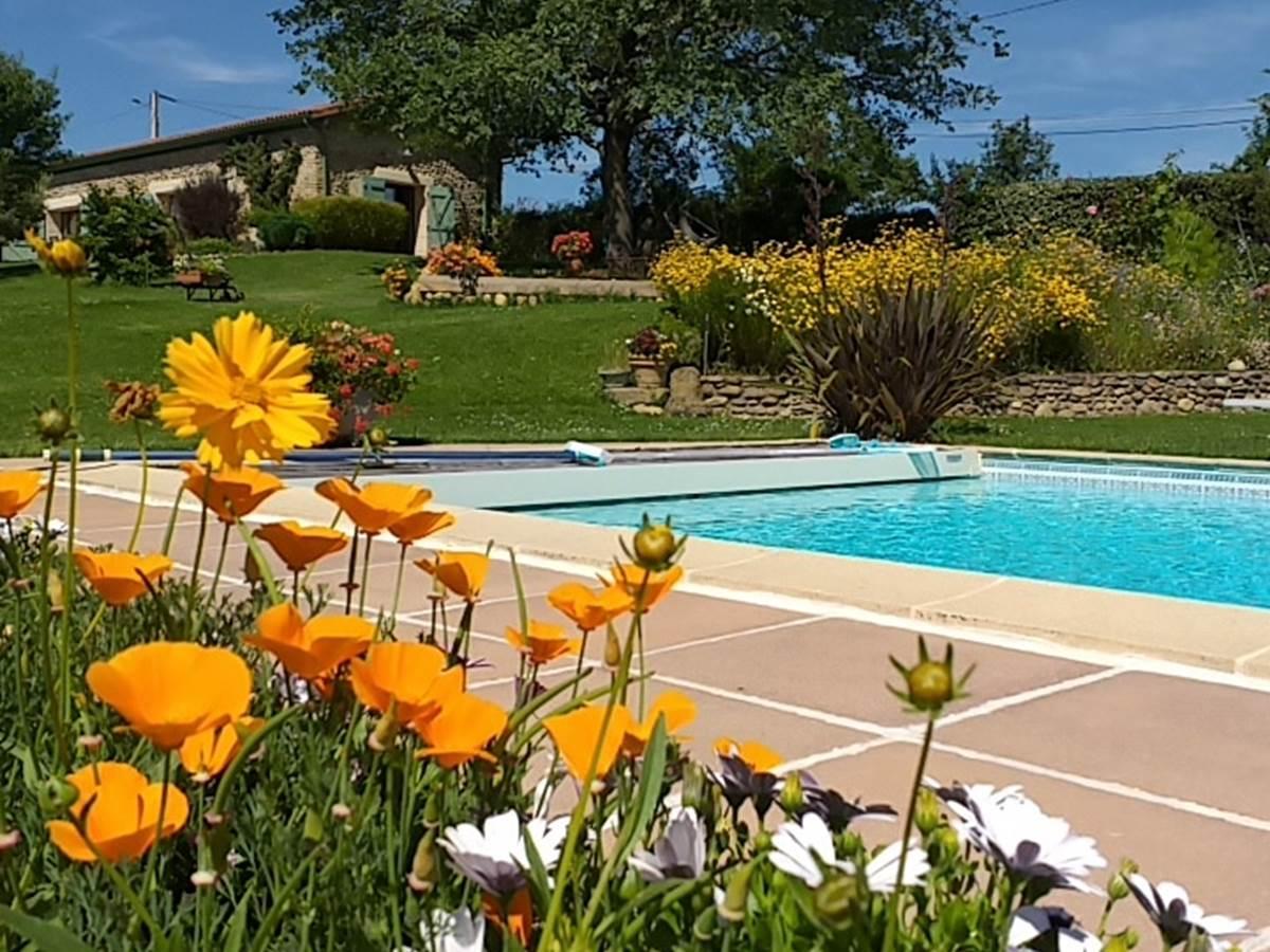 La piscine au milieu des fleurs