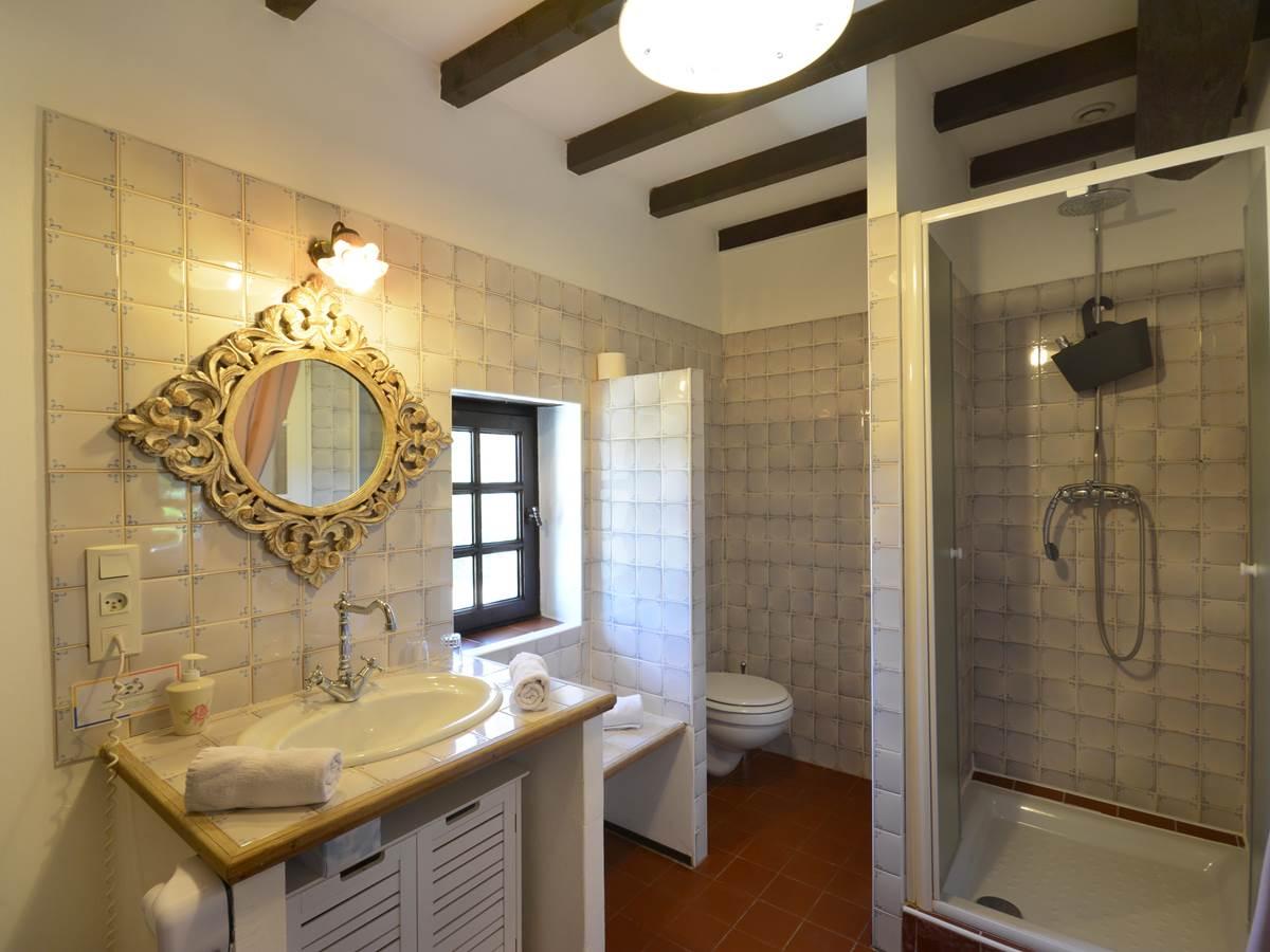 la salle de bain , douche et wc