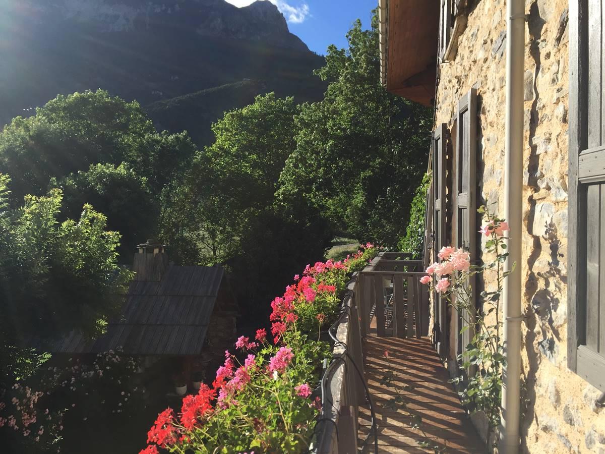 Les balcons fleuris en été