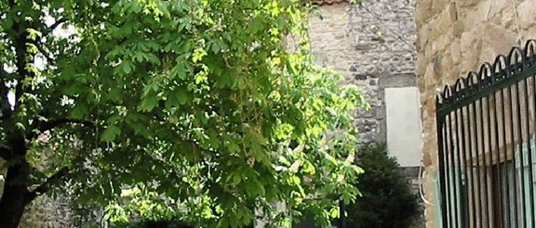 """Gîte """"Les Palmiers"""" – GARRIGUES SAINTE EULALIE – location Gard"""