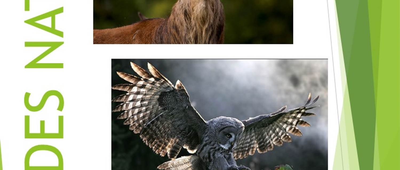 Escapades Nature 2021