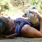 asinerie-badjane-notre-ferme-annie-et-anisette-seance-de-relaxation
