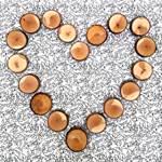 Coeur en rondin de bois déposé sur le lit