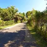 randonnée-cocoteraie-village-les villas de Sainte Marie-Madagascar