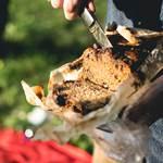 asinerie-badjane-cake-pour-le-panier-repas-de-midi