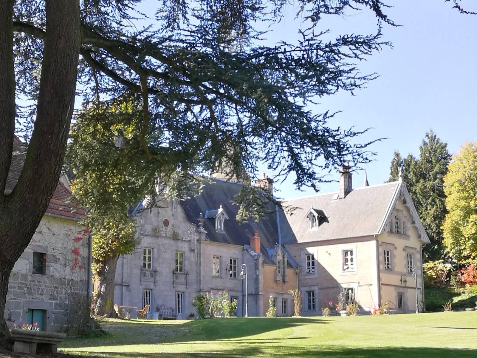 Château de Crocq, côté parc. Cèdre de l'Atlas.