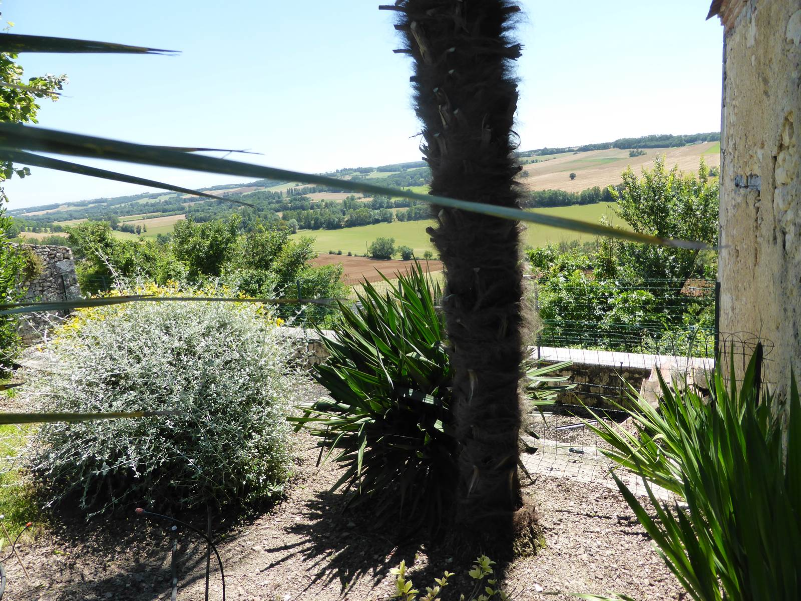 Saint Roch chambres d'hôtes fond du jardin vers vallée.jpg